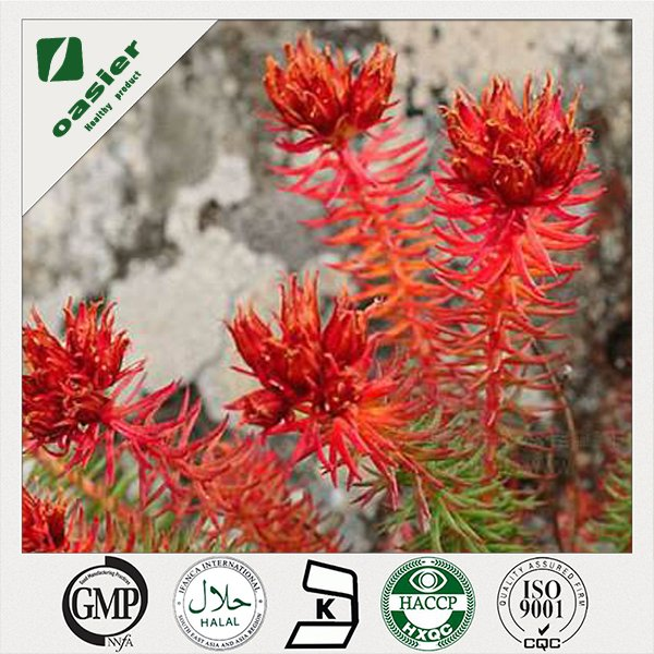 The Function of Rhodiola Rosea Extract-Protect the cardiovascular