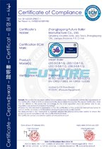 CE-Certificate-for-Oil-Gas-Steam-Boiler副本