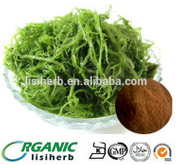 9072-19-9 seaweed anti-oxidation powder fucoidan price