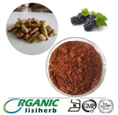 Cheap hot sale organic grape seed extract proanthocyanidin