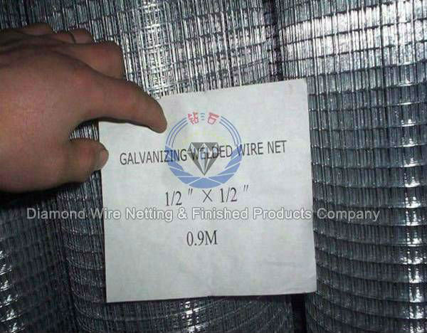 Hot Dipped Galvanized Welded Wire Mesh/ Stainless Steel Welded Wire ...