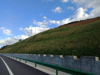Technology of slope greening