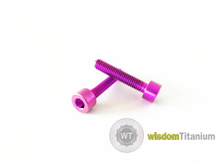 Titanium Bicycle Barke Bolt Purple M5*25