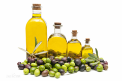 Olive Oil can prevent brain tumor