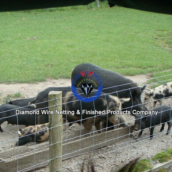 farm filed fence