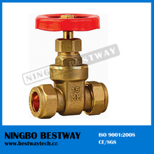 200wog Forged Brass Gate Valve with Prices (BW-G11)