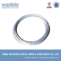 China Manufacture GI Wire # 16 & Binding Wire Annealed