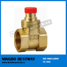 OS Y Stype Brass Gate Valve Fast Supplier (BW-G09)