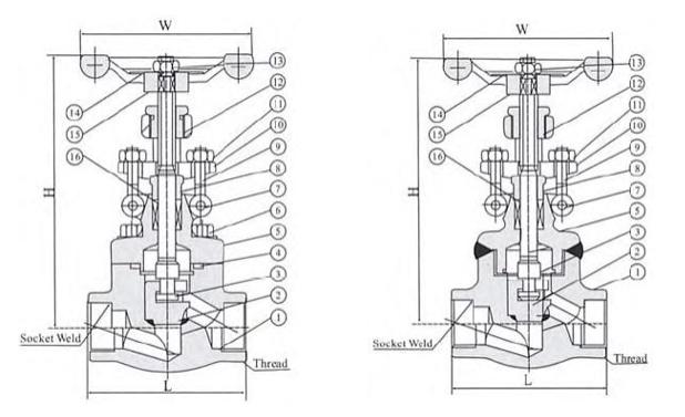 800LB npt globe valve
