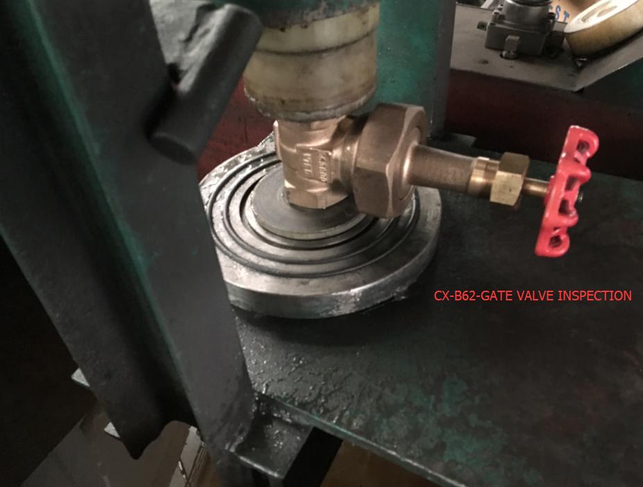 Prueba hidráulica de la válvula de puerta CX-B62