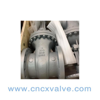 API Flanged Cast Steel Gate Valve