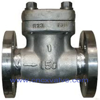 Forged Steel Flanged End Check Valve