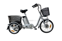 250W E Tricycle Lithium Battery Electric Tricycle Electiric Three Wheeler LED Display for Elder