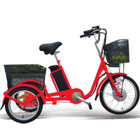 20 inch red electric tricycle for girl