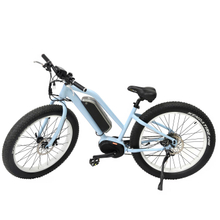 Hot Sale Beach Cruiser 36V 250W Li Battery