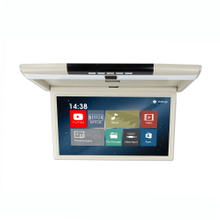 15.6 Inch Android System Roof Monitor