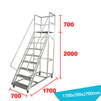 Warehouse Ladder LT-14