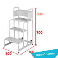 Warehouse Ladder LT-5